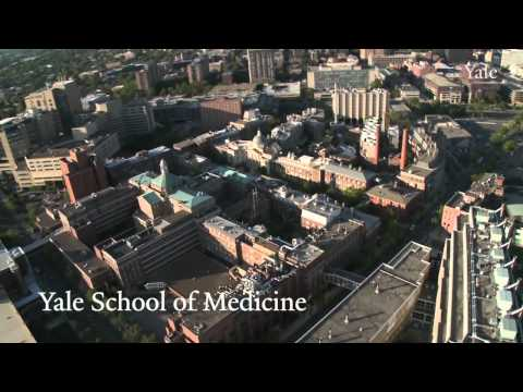 Take a tour of the beautiful Yale University campus from the sky.